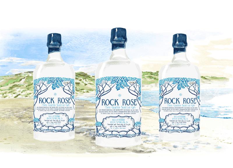 Rock Rose Gine Bottles Sarah Smart Illustrations